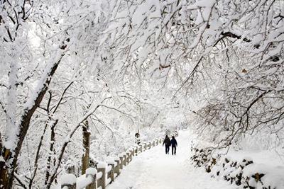 اس ام اس جدید فصل زمستان