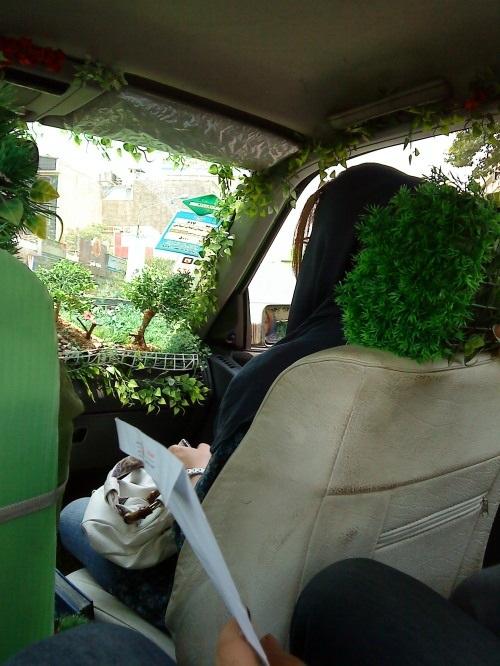 تاکسی جنگلی در تهران