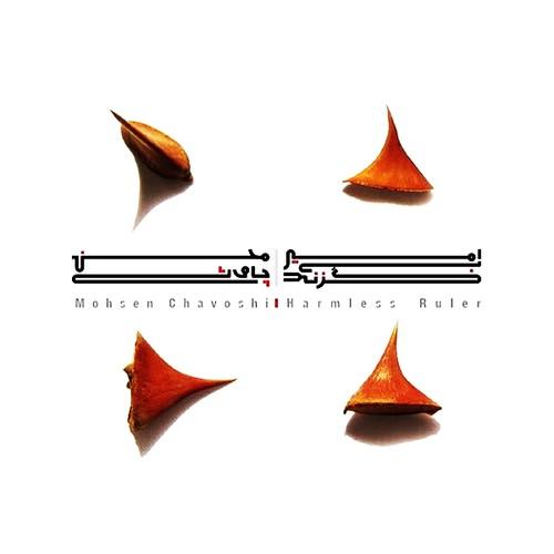 متن تمام آهنگ های آلبوم محسن چاوشی به نام امیر بی گزند