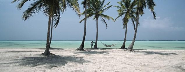 تصویر زیبای ساحل